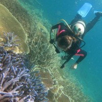 Lexi exploring the reef! #PADI20Millionth