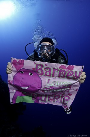 Team Purple Diver © Tanya G. Burnett