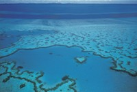 Scuba Diving Great Barrier Reef Australia