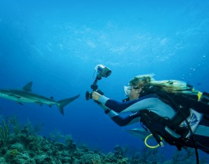 Diver with camera chasing shark