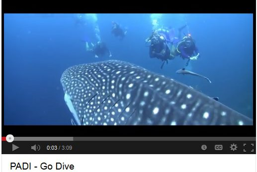 share your love of scuba diving with this PADI GoDive video