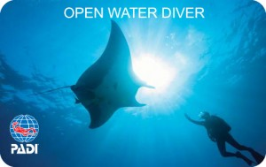 padi-dive-card-stephen-frink-manta-ray