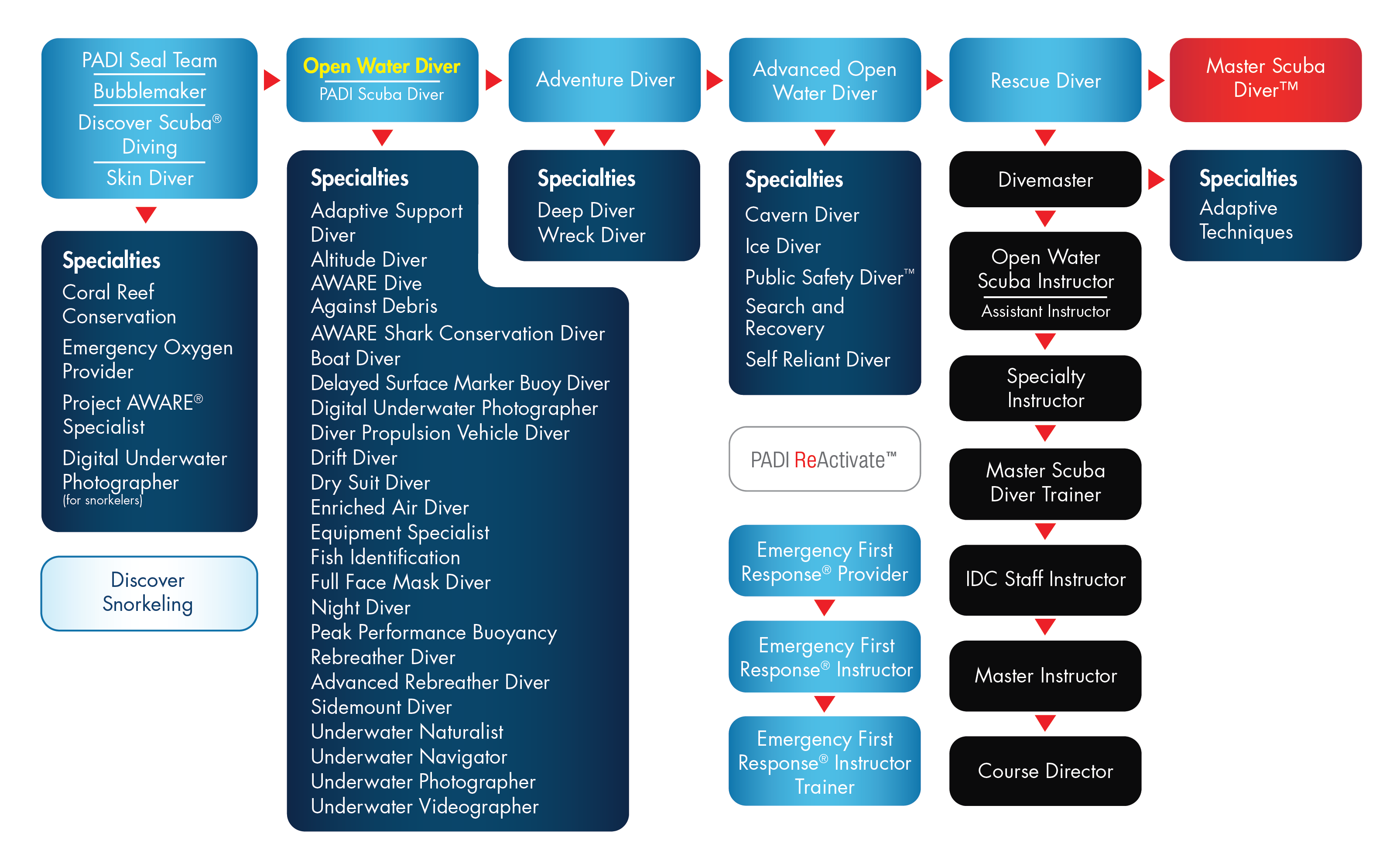 PADI ConEd Flowchart - Scuba Diving - Scuba ConEd