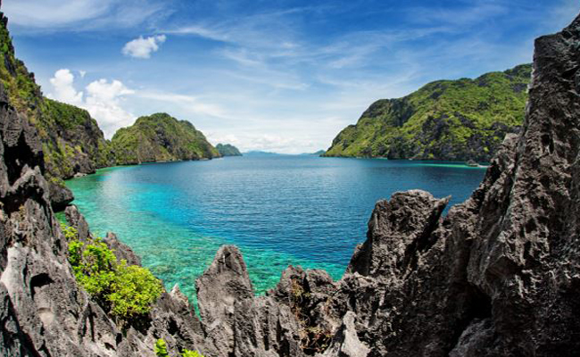 Marine Life in the Philippines - Scenery