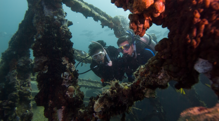 two divers explore wreck