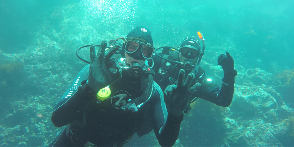 Sidharth Malhotra Diving PADI Dive! Tutukaka
