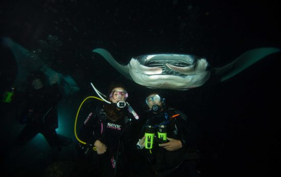 Manta Ray Dive in Hawaii