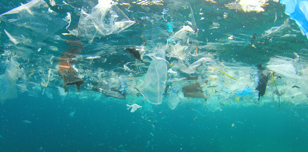 The Truth About The Great Pacific Garbage Patch