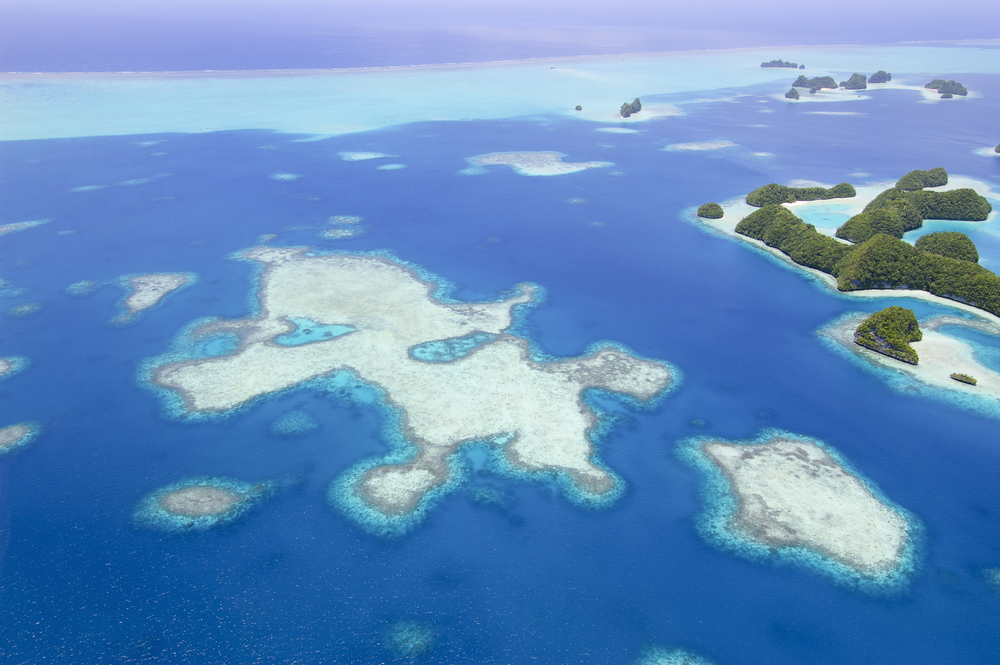 Coral Reef Aerial Surveys - Palau