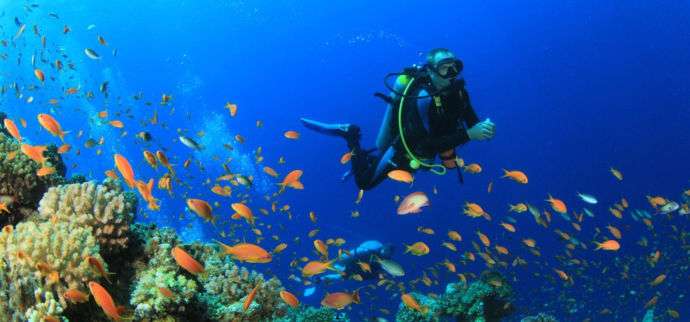 Batangas Beach Resorts : How Scuba Diving Can Make You ...