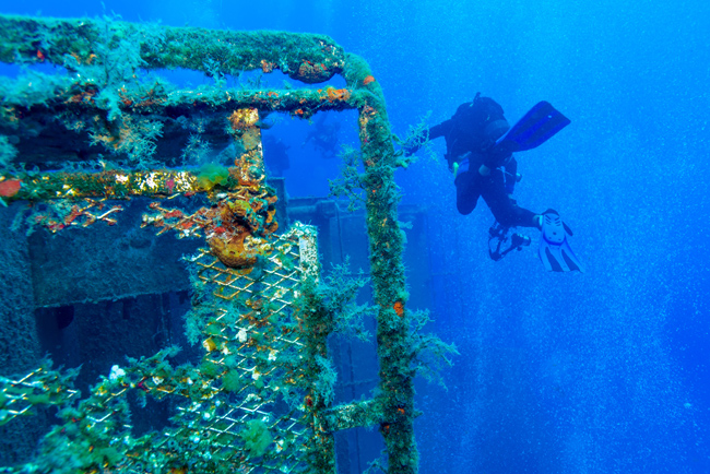 The Zenobia, Wreck Dives in Cyprus