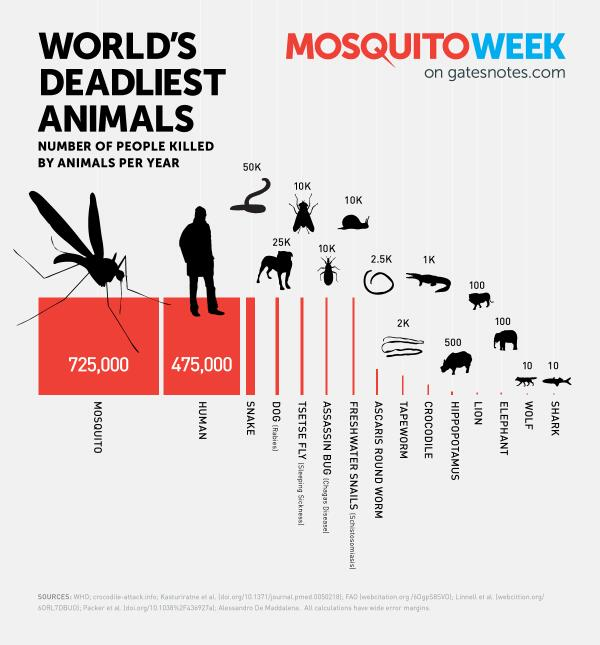 most deadly animals
