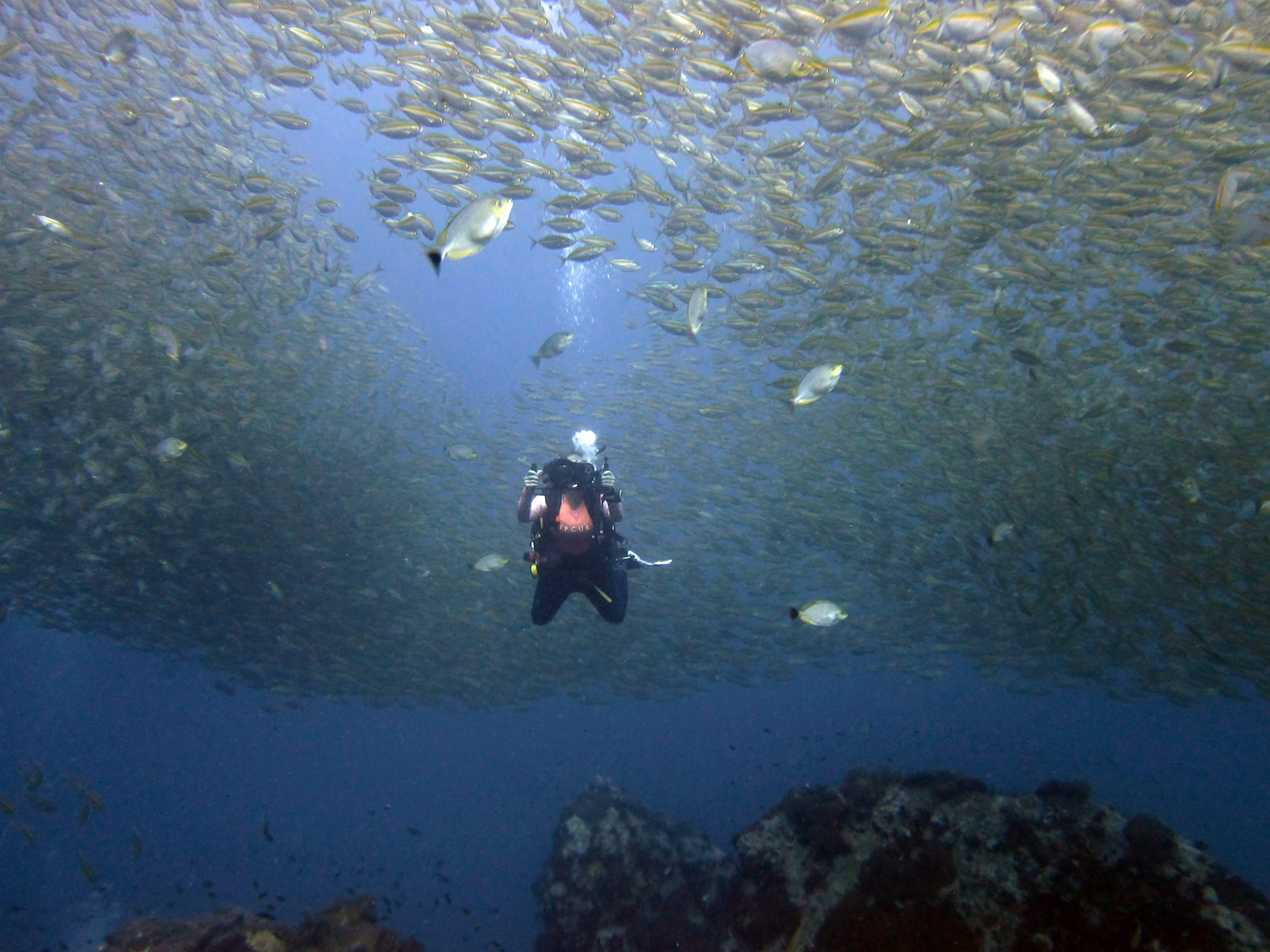Sine Sara - Open Water Scuba Intructor