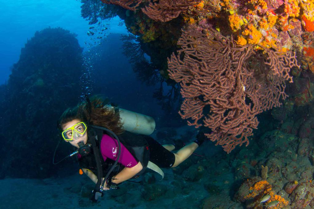Women in Diving Photo courtesy of Broadreach