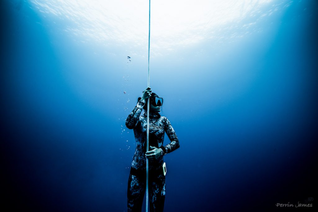 Freediving in Hawaii Photo: Perrin James