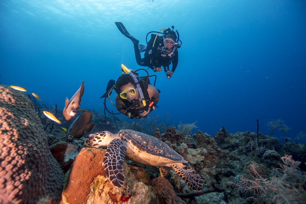 scuba diving grand cayman