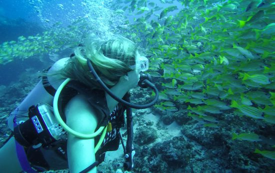 The blonde abroad kiersten rich scuba diving maldives