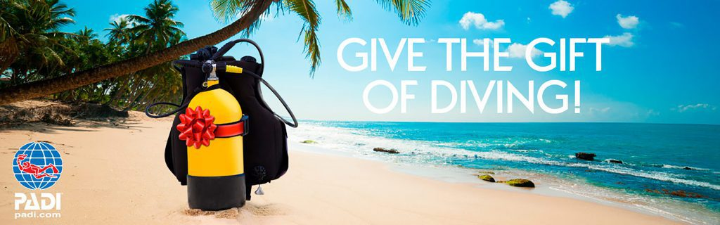 give the gift of diving