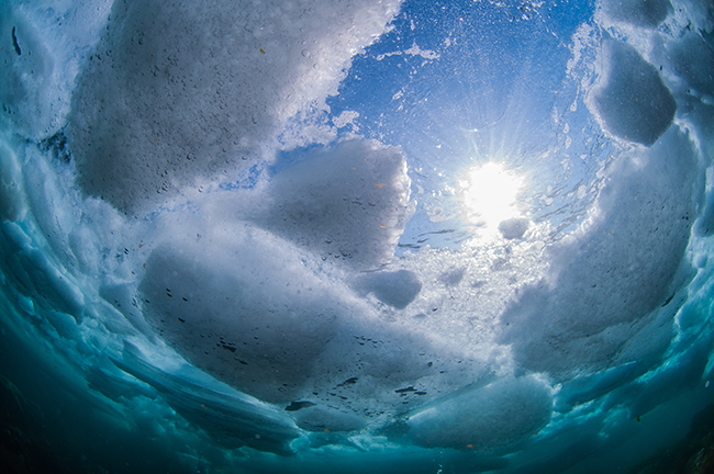 Cold Water Diving Ice Drift Diving, Japan