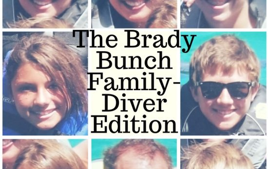 brady bunch family edition