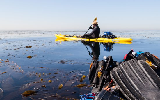kayak diving in california