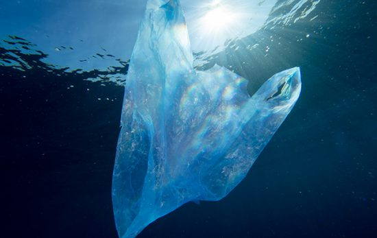 New world of conservation plastic bag