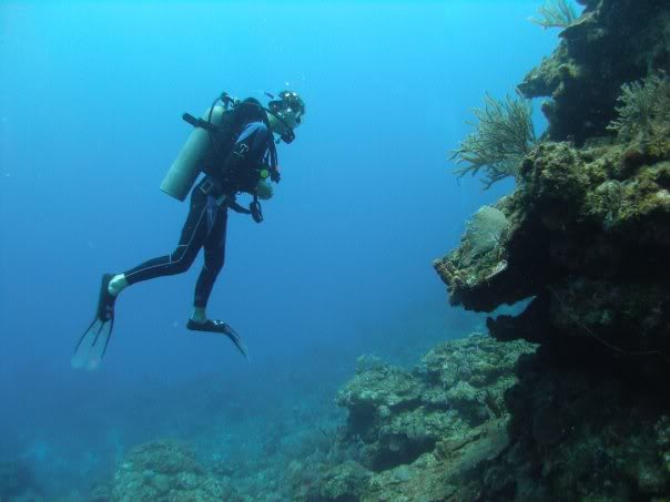 Diving in Roatan, Honduras