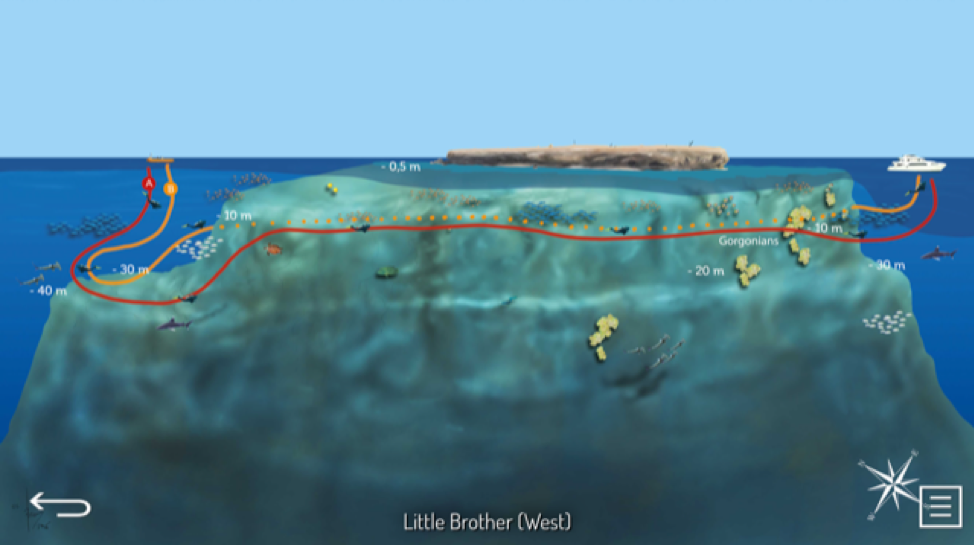 Dive Map- Little Brother