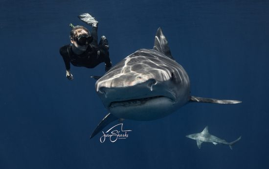 ocean ramsey Photo: Juan Oliphant