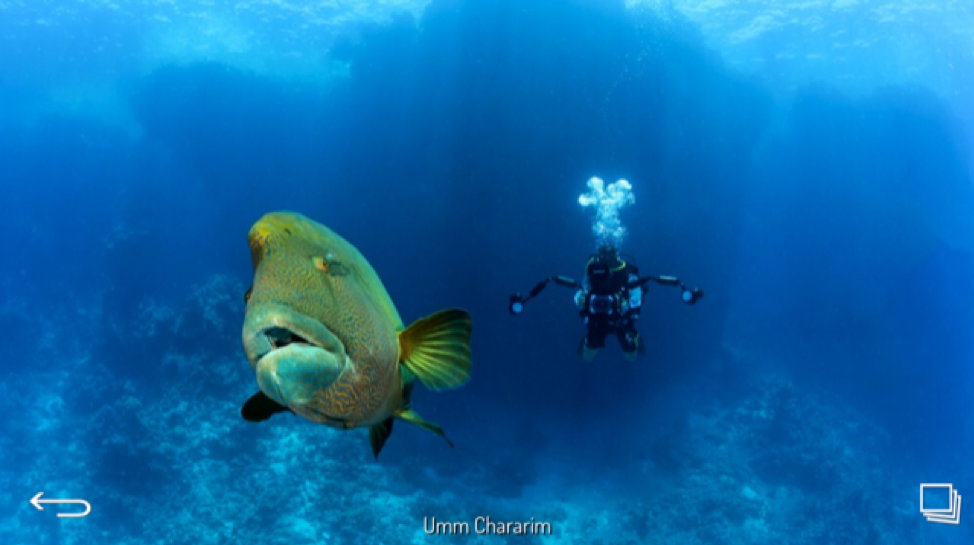 Umm Chararim - Red Sea