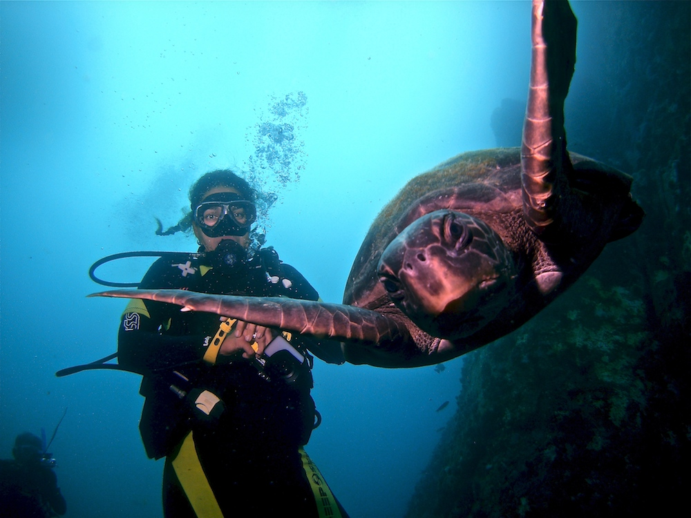 Photo: Cartegena Divers