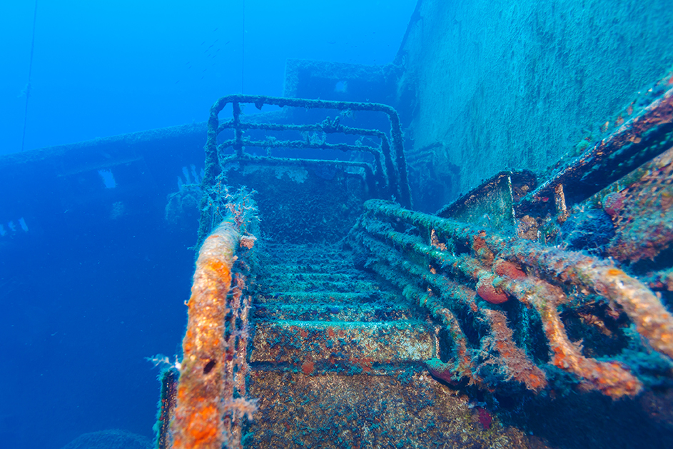 Best freediving spots for wrecks - The Zenobia