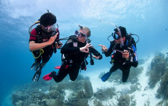 Bonaire - Open Water Divers - Scuba Divers - New Divers