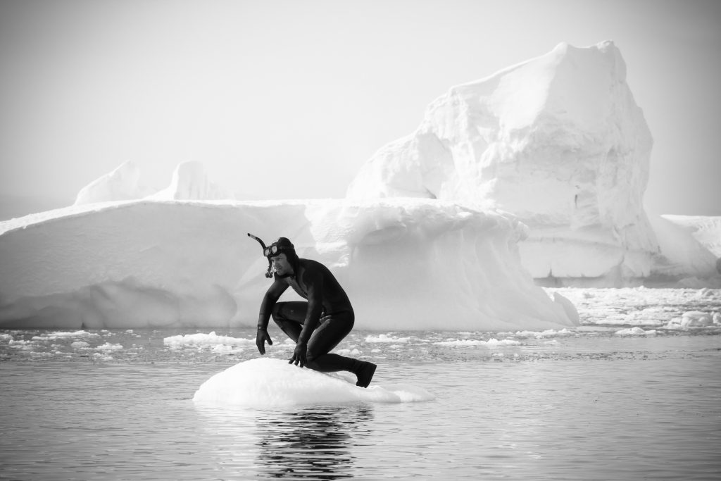 diving with endangered species in Antarctica