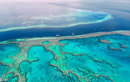 How can you help the Great Barrier Reef Header