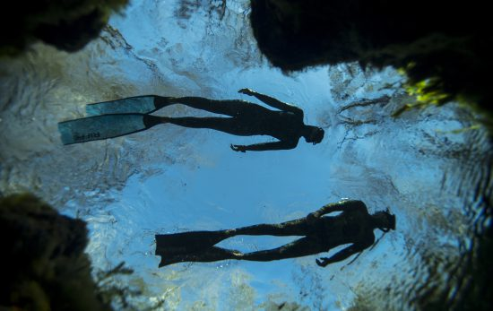 Freedivers - PADI Freediver