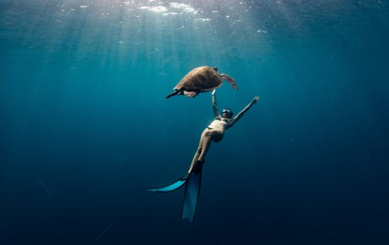 Freediving - Thailand - Ploy - Turtle