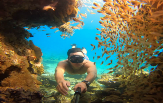 padi gopro evolution