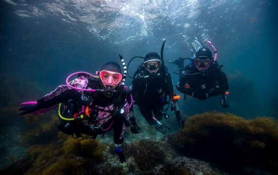 PADI Womens Dive Day - Catalina - Underwater
