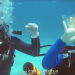 Father-Daughter Diving with Sign Language